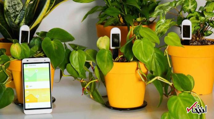 ردیابی سلامت گیاهان با سنسور های هوشمند