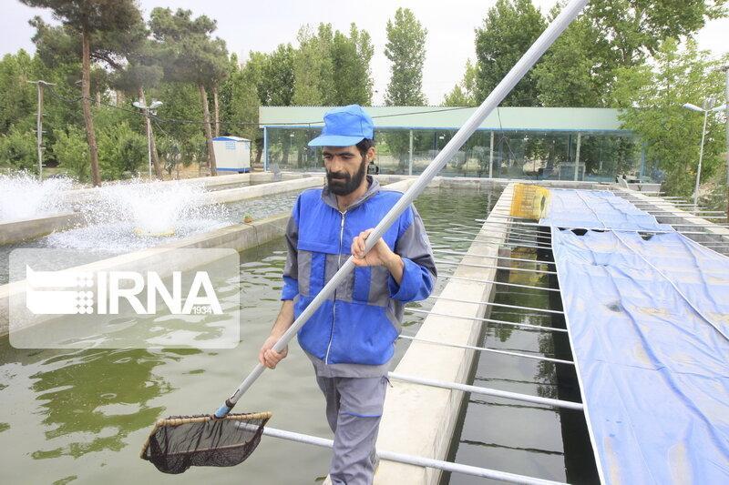 خبرنگاران ایجاد حدود 16 هزار شغل در بخش کشاورزی خراسان شمالی